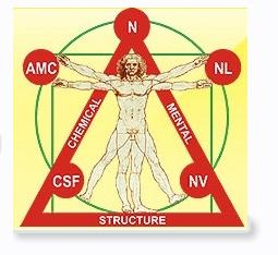Прикладная кинезиология