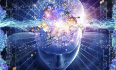 Интеграция мозга LEAP