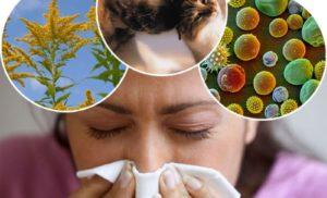 Каналы иммунной системы прививок
